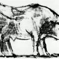 Picasso's bull